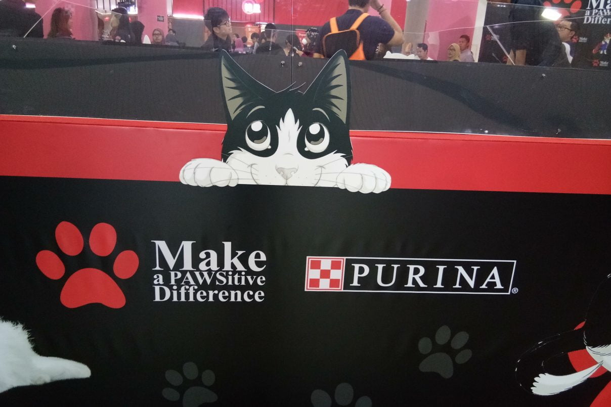 Make a PAWSitive Difference